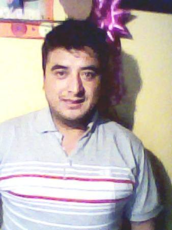 Santos Delfino