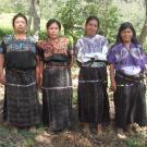 Grupo Xolcaja Group