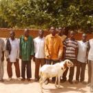 Jekafo N°1 Group