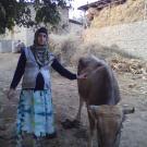 Mohsafar
