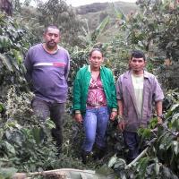 Cafeteros La Bolsita Group