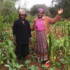 Umoja Nyambari Women Group