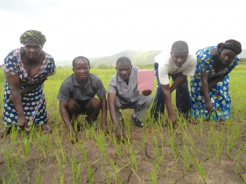 photo of Uhusiano Kiliba Group