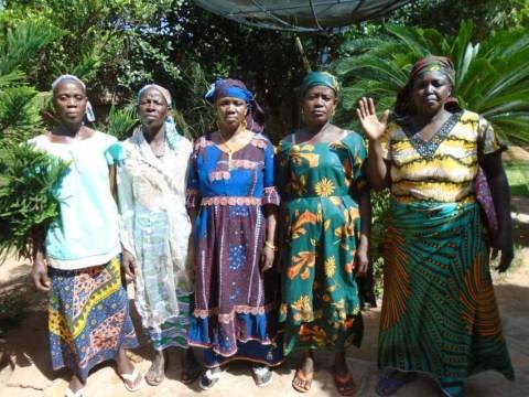 photo of Pala Moussouw Group