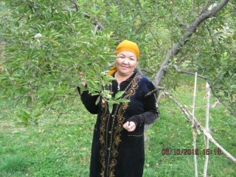 photo of Gulsyina