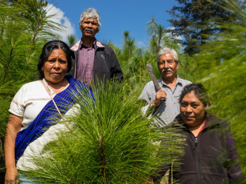 photo of Pa'tamu Group