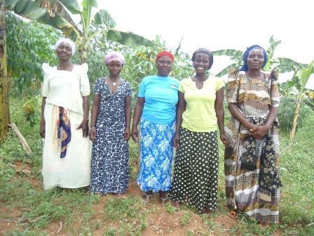 Josephine's Group
