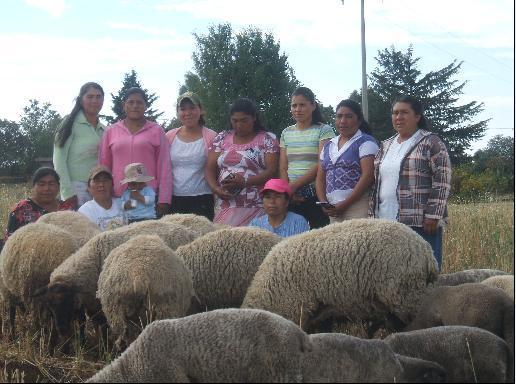 Las Coquetas Lindas Group