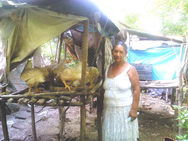 María Arminda