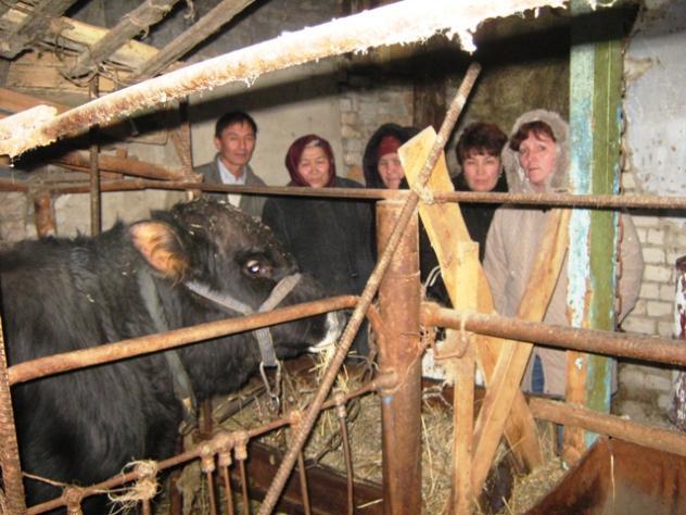Togjan's Group