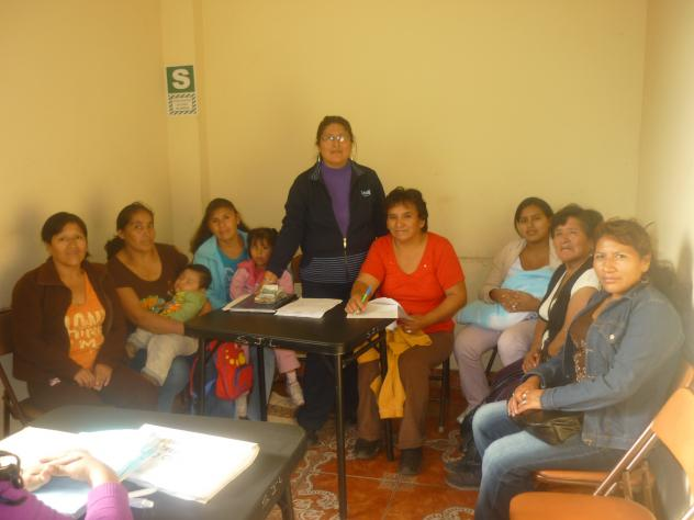 El Alto Cenepa Group